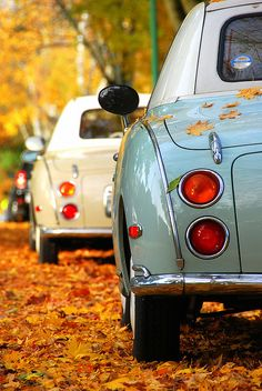 Autumn Leaves and Nissan Figaro