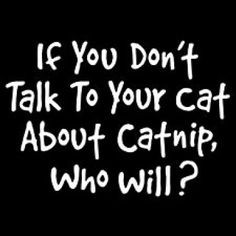 If you don't talk to your cat about catnip. Who will T-Shirt