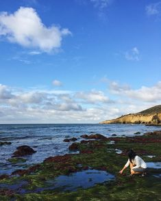 10. Go tide pooling. | 18 Things You Didn't Know You Could Do In San Diego