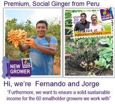 New Growers Organic Ginger from Fernanco & Jorge! #natureandmore #organic #ginger #sustainable #onecentforthefuture