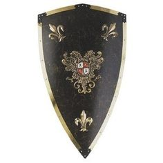 During the Medieval era knights or people in battle used shields similar to these to protect themselves. Description from pinterest.com. I searched for this on bing.com/images