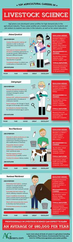Top Careers in Livestock Science - Agriculture Job - Ideas of Agriculture Job - Top Careers in Livestock Science Ag Science, Animal Science, Science Lessons, Future Classroom, School Classroom, Classroom Decor, Ag Jobs, Enterprise Architecture, Job Help