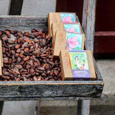 Kakaobohnen #krämerbrücke #brunnen #erfurt #iloveefurt
