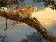 Wildlife Paintings, Wildlife Art, Animal Paintings, Animal Drawings, Save Animals, Animals And Pets, Animal Painter, Big Cats Art, Norwegian Forest Cat
