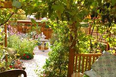 Jardin d'Oriente - Oriental Garden - Orientalischer Garten - Today Oct 2013