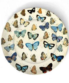 Butterfly Plate.