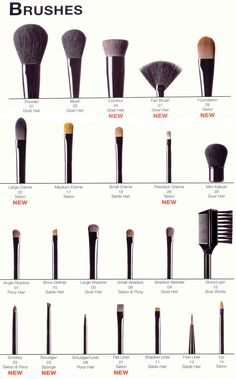 Must need...  Makeup brushes