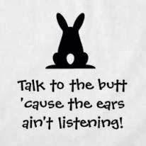 #funny #rabbits
