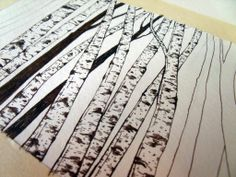 how to sketch a paper birch tree - Google Search