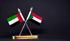 Emirati and Sudanese authorities met to discuss cooperation in energy and infrastructure, state news agency WAM reported...