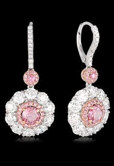 Platinum & Rose Gold Round Brilliant Cut Diamond Earring Crafted in Platinum, these stunning Pink and White Diamond set drop earrings, from our Hardy Brothers Vault Collection, are set in a classic cluster design. With an impressive total Diamond wei Pink Jewelry, Silver Jewelry, Vintage Jewelry, Jewelry Accessories, Jewelry Design, Silver Ring, Pink Diamond Jewelry, Pandora Jewelry, Silver Earrings