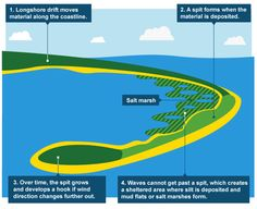 Help with homework on coastline erosion?