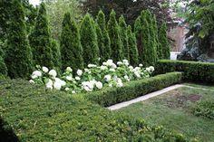 Landscape/Design/Gardening