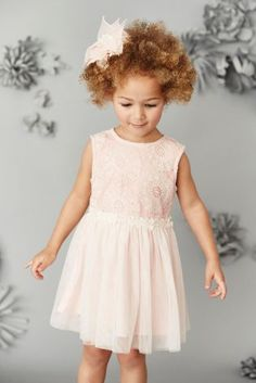 Buy Pink Floral Lace Party Dress (3mths-6yrs) from the Next UK online shop