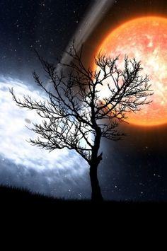 Moon Light Sky