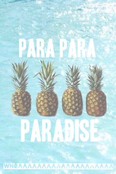 pineapple   Tumblr