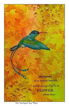 """Mir'acle Art Inspirations: Autumn colors and a beautiful tail hummingbird Streamer"