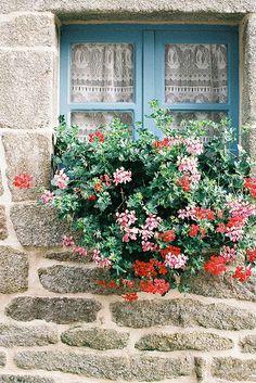家と植物のコラボレーション!世界の素敵な出窓とガーデニング7選♪