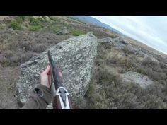 Howard Halliday - YouTube