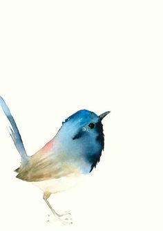 Watercolor bird. Acuarela pajaro