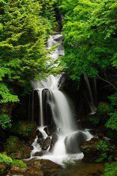 Nikko Waterfall, Tochigi Prefecture, Japan