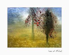 Display, Photography, Painting, Art, Fantasy, Billboard, Painting Art, Paintings, Kunst