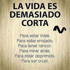La vida es demasiado corta...