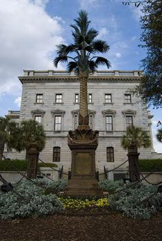 Palmetto Tree Statue, South Carolina Statehouse, Columbia, South Carolina by Shea Nelson