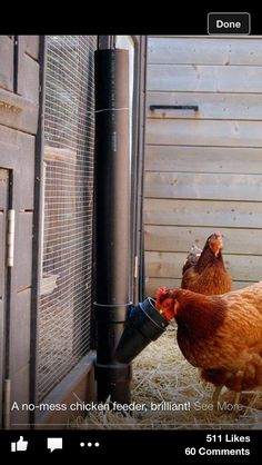Chicken feeder on the cheap...plus you could extend beyond the top of the cage and cap for easy refill.