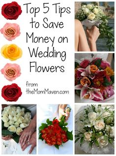 Blog post at The Mom Maven : This week Aaron signed the contract and paid the deposit on the wedding flowers! We had an original plan for the flowers. We were going to o[..]