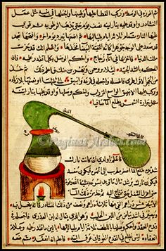 El cultivo de la vid fue introducido en la zona de Jerez por los fenicios sobre el 1100 a.C, como lo hicieron por toda la cuenca mediterránea, trayendo variedades procedentes de Egipto y Mesopotamia