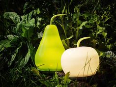 Glow fruit for the garden