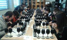 Un proyecto europeo pretende localizar las variedades minoritarias de uva y estudiar su potencial para la producción de caldos selectos.
