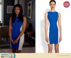 Divya's blue and white colorblock dress on Royal Pains. Outfit details: http://wornontv.net/18033/