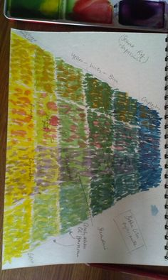Markmaking, related or complementary colours
