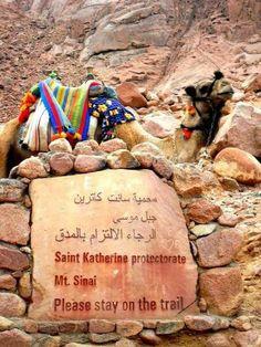 Saint Catherine ...Moses Mountain....South Sinai  #Egypt