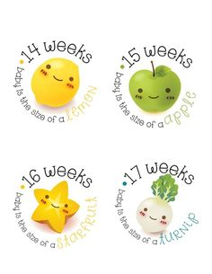 Items similar to Pregnancy Stickers - Belly Stickers - Baby Bump Weekly Stickers - Maternity photo prop - Scrap book pregnancy - Pregnancy Reveal on Etsy 28 Weeks Pregnant Belly, Baby Weeks, Baby Apple, Maternity Photo Props, Baby Stickers, Bun In The Oven, Baby Bumps, A 17, Baby Month By Month