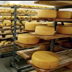 """Portuguese aged cheese from """"Sao Jorge """" Acores"""
