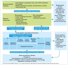 Conceptual framework of food system activities and natural resources