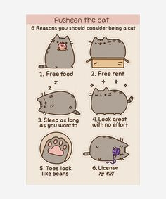 Because who doesn't love Pusheen Cat?