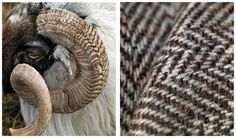 Ian Lawson's remarkable photography on Harris Tweed. Outer Hebrides, Scotland