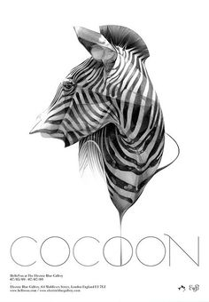 Cocoon - poster visual design