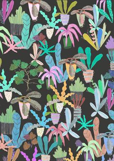 Amyisla McCombie #patternlove #surfacedesign