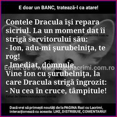 Funny Quotes, Funny Memes, Funny Pictures, Funny Pics, Haha, Humor, Romania, Abstract, Pictures