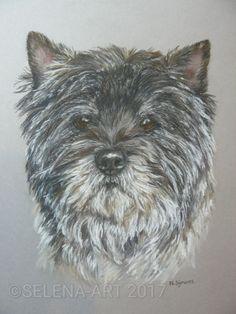 Pasteltekening van Cairn Terrier Jodie www.selena-art.nl