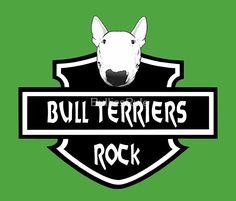 """Bull Terriers Rock"""