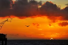 A star, a pelican and the sunset in Oceanside.