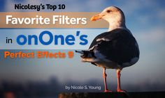 """""""My 10 Favorite Filters in onOne's Perfect Effects 9"""" - http://nicolesy.me/1x2Ub8e #onOneSoftware, #Photography, #Software"""