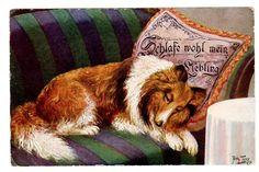 "POSTCARD THIELE DOG COLLIE ""SLEEP WELL MY FAVORITE""  T.S.N. 1127"