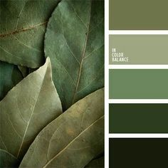monochrome green color palette perfectly combines shades of green ranging from. - Some Colour Inspiration -A monochrome green color palette perfectly combines shades of green ranging from. - Some Colour Inspiration - Exterior Paint Colors For House, Paint Colors For Home, Exterior Colors, House Colors, Gray Exterior, Paint Colours, Ranch Exterior, Stucco Exterior, Exterior Homes